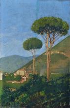 Lotto 280 - Palmigiano Catello